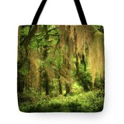 Forest Fantasy - Quinault - Gateway To Paradise On The Olympic Peninsula Wa Tote Bag