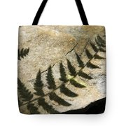Forest Fern Shadows Tote Bag