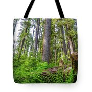 Forest Floor Of Hoh Rain Forest Tote Bag