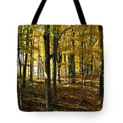 Forest Floor One Tote Bag
