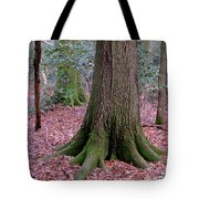 Forest Foundation Tote Bag
