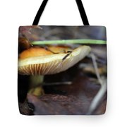 Forest Fungi Tote Bag
