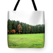 Forest In Bavaria Tote Bag