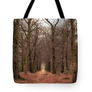 Forest Lane Near Maarsbergen Tote Bag