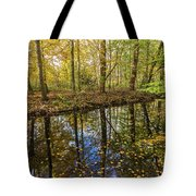 Forest Leaf Reflection Tote Bag