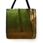 Forest Light 1 Tote Bag