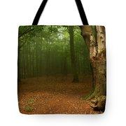 Forest Light 2 Tote Bag