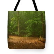 Forest Light 4 Tote Bag