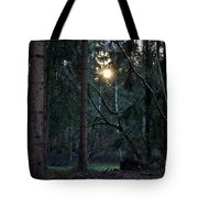 Forest Magic 7 Tote Bag
