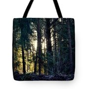 Forest Magic 8 Tote Bag