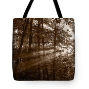 Forest Mist B And W Tote Bag