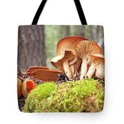 Forest Mushrooms Tote Bag