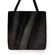Forest Nightscape Tote Bag