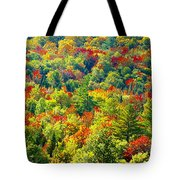 Forest Of Color Tote Bag