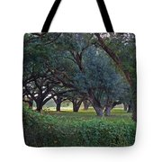 Forest Of Green Bw Tote Bag