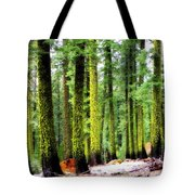 Forest Of The Crossroads Tote Bag