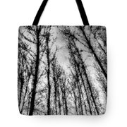 Forest Pastel  Tote Bag