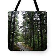 Forest Path At Grafton Notch State Park Tote Bag