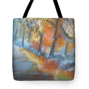 Forest Path.... Tote Bag
