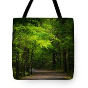 Forest Path Tote Bag