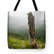 Forest Remnant Tote Bag
