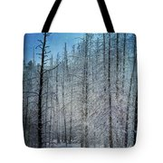 Forest Secrets  7917 Tote Bag