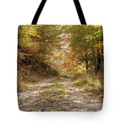 Forest Stone Path Tote Bag