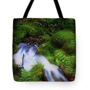 Forest Stream. Benmore Botanic Garden Tote Bag