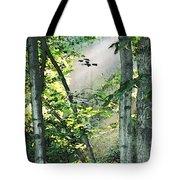 Forest Sunbeam Tote Bag