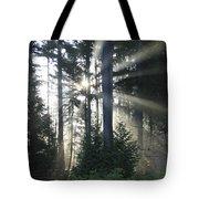 Forest Sunrise Tote Bag