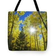 Forest Sunshine Tote Bag