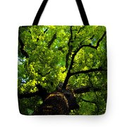 Forest Top Tote Bag