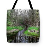 Forest Trees Creek Pathway Tote Bag