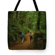 Forest Walkers, El Camino, Spain Tote Bag