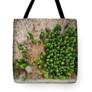 Forest With Green Trees From Above Tote Bag