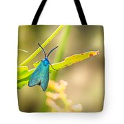 Forester Moth From Bulgaria Tote Bag