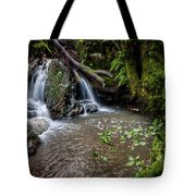 Forests Deep Tote Bag