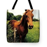 Forever Freedom Tote Bag