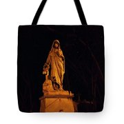Forever Still And Cold Tote Bag