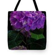 Forever Violet Tote Bag