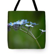 Forget-me-not 2 Tote Bag