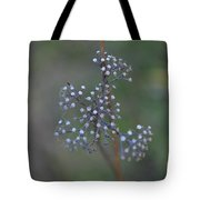 Forgotten Beauty Tote Bag