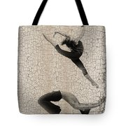 Forgotten Romance 5 Tote Bag by Naxart Studio