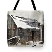 Forgotten Treasures Tote Bag by Stephanie Calhoun
