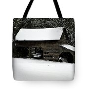 Forgotten Tote Bag by Valeria Donaldson