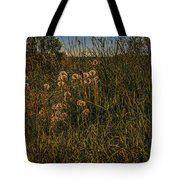Forgotten World #h6 Tote Bag by Leif Sohlman