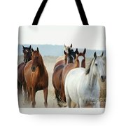 Form Two Lines Tote Bag