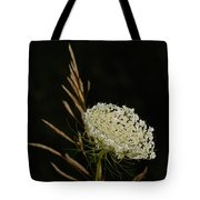 Formal Queen Anne's Lace Study Portrait Tote Bag