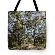 Forsyth Park Tote Bag