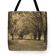 Fort Frederica Oaks Tote Bag